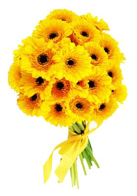Citystore.in, Flower Bunch, Yellow Gerbera Flower Bunch, City Store