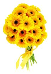 Citystore.in, Flower Bunch, Yellow Gerbera Flower Bunch, City Store,