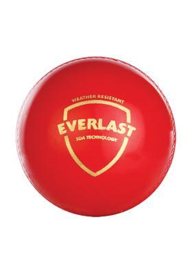 SG Everlast Cricket Ball Synthetic
